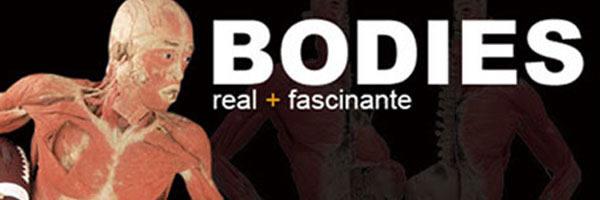 Exposición Bodies en Medellín